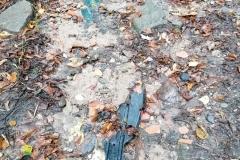 Odpady w Modrzewiu koło Wlenia 01