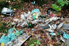 Odpady w Modrzewiu koło Wlenia 07