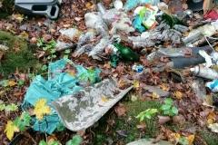 Odpady w Modrzewiu koło Wlenia 08