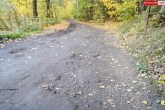 Droga przy Zaporze wodnej w Pilchowicach 8