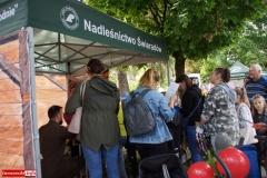 Dolnoslaski-Festiwal-Dary-Lasu-2021-26