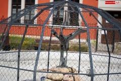 fontanna z czaplą lwówek śląski 2020 4
