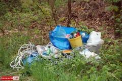 Gryfów Śląski Śmieciowa ścieżka 1