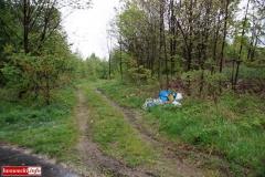 Gryfów Śląski Śmieciowa ścieżka 2