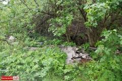Gryfów Śląski Śmieciowa ścieżka 3