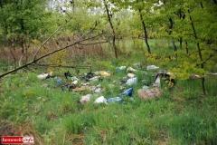 Gryfów Śląski Śmieciowa ścieżka 4