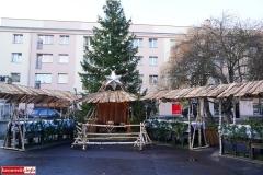 Jarmark Bożonarodzeniowy w Lwówku Śląskim 03