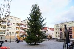 Jarmark Bożonarodzeniowy w Lwówku Śląskim 21