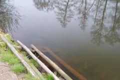 Spływ kajakami rzeka Bóbr Dębowy Gaj 08