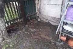 Świeradów zalani przez kanalizację 2