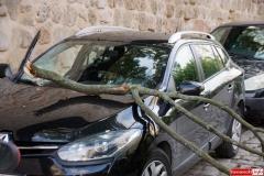 Konar spadł auto 5