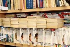 Książki biblioteka 5