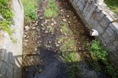 Zanieczyszczenei rzeki w Wojciechowie 3