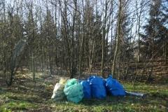Dzikie wysypisko śmieci w Lwówku Śląskim 6