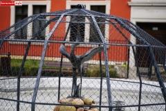 Lwówek Śląski fontanna z czaplą 8