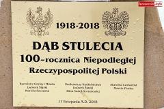 Lwówek Śląski setną rocznicę Niepodległej upamiętnił bykami 4