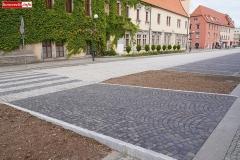 Lwóek Śląski Plac Wolności dolny rynek 04