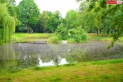 Park Miejski w Lwówku Śląskim 2