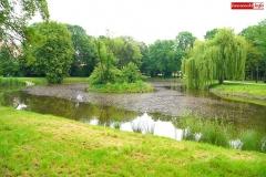 Park Miejski w Lwówku Śląskim 6