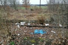 Stacja kolejowa w Mirsku wysypisko śmieci 6