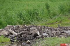 Odpady pomiędzy łanami zbóż 05