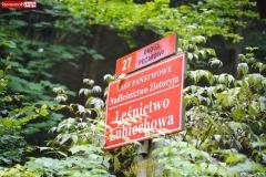Okole Góry Kaczawskie Lubiechowa 02