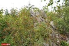 Okole Góry Kaczawskie Lubiechowa 07