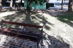 Kopiuj  z Lwówek Śląski Park miejski czy klub nocy 8