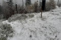 pierwszy śnieg w górach 7