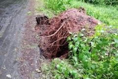 Radomiłowice - Górczyca zerwany asfalt 2