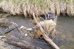 Rębiszów - dzikie wysypisko śmieci 06