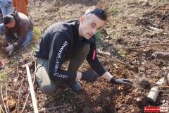 sadzenie lasu 26