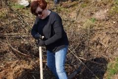 sadzenie lasu 35