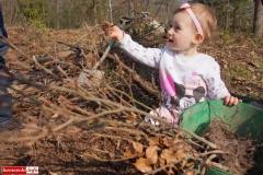sadzenie lasu 59
