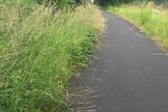 Ś☺cieżka rowerowa Lwówek Śląski Pławna 6