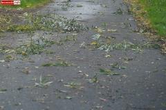 silny wiatr gałęzie na drogach 1