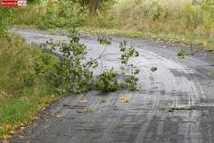 silny wiatr gałęzie na drogach 2