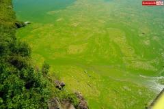 sinice-jezioro-pilchowickie-Wlen-1