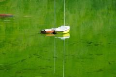 sinice-jezioro-pilchowickie-Wlen-6