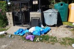 Gryfów Śląski śmieci niczyje 2