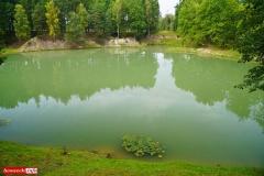 Nowogrodziec-staw-nadlesnictwo-6