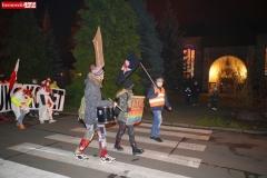 Strajk Kobiet Lwówek Śląski 43
