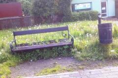 Radni wykosili trawę Świeradów Zdrój 05