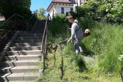 Radni wykosili trawę Świeradów Zdrój 09