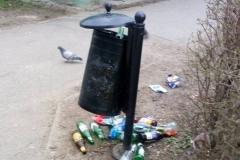 Lwówek Śląski. Syf w parku miejskim 12