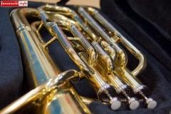 orkiestra w zset w rakowicach wielkich 04
