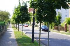 Ulica Partyzantów w Lwówku Śląskim 1