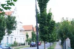 Ulica Partyzantów w Lwówku Śląskim 5