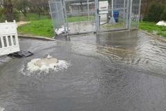 Świeradów- Zdrój wybijająca kanalizacja 2