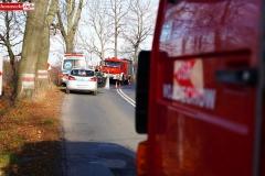 busem w drzewo 05